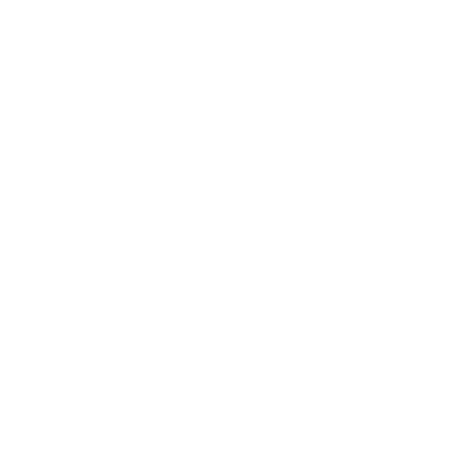 MeinClassicMini Logo Weiß